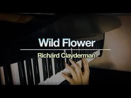 Wild Flower Richard Clayderman