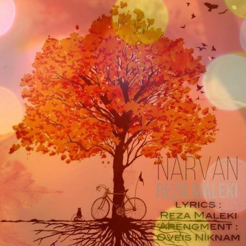 آهنگ نارون از رضا ملکی