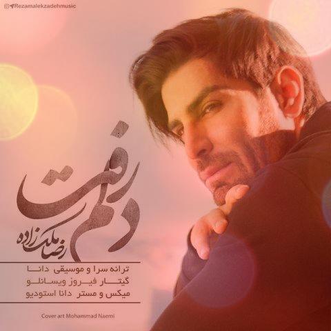 آهنگ دلم رفت از رضا ملک زاده