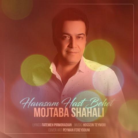 آهنگ حواسم هست بهت از مجتبی شاه علی