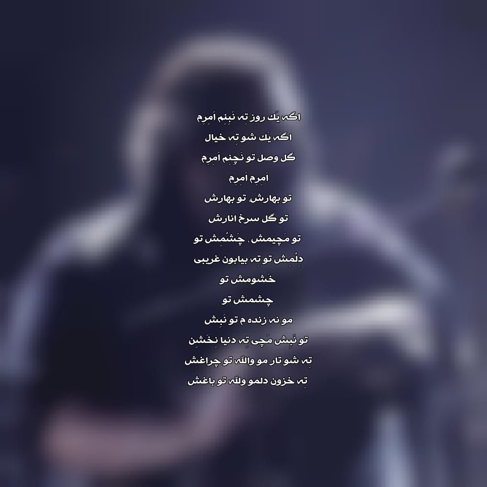 آهنگ جدید رضا صادقی به نام امرم