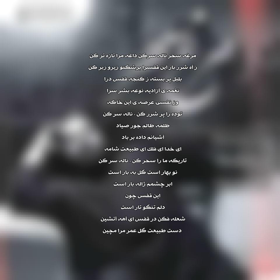آهنگ جدید رضا صادقی به نام مرغ سحر