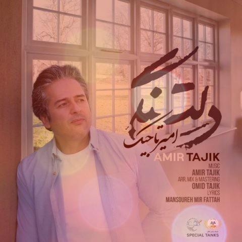 آهنگ دلتنگی از امیر تاجیک