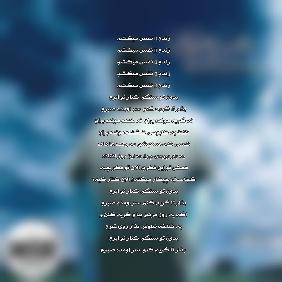 آهنگ جدید محسن چاوشی به نام یه شاخه نیلوفر