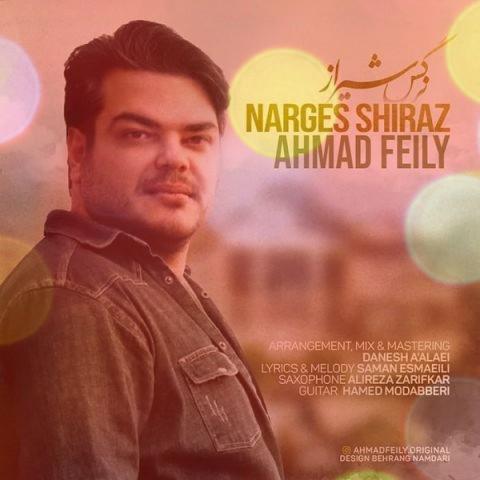 آهنگ نرگس شیراز از احمد فیلی | شما لب تر کنی من جونمو میزارم به پات