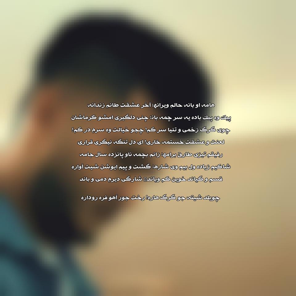 دانلود آهنگ محمد محمدی طارق