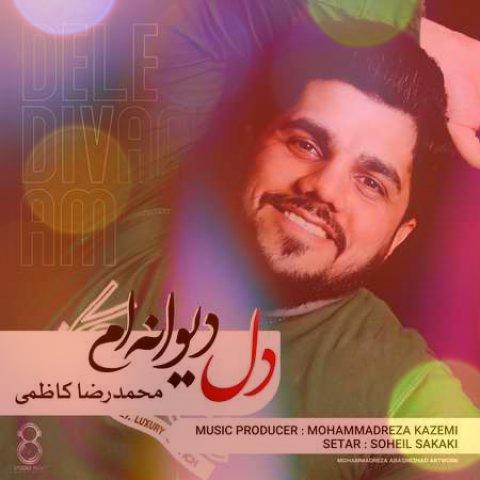 آهنگ دل دیوانه ام از محمدرضا کاظمی | عطر تو و بوی تو تاب گیسوی تو