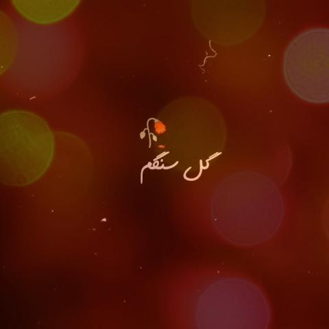 آهنگ گل سنگم دل تنگم از احمد سلو | گل سنگم دل تنگم بگو تا کجا من دور تو بگردم؟
