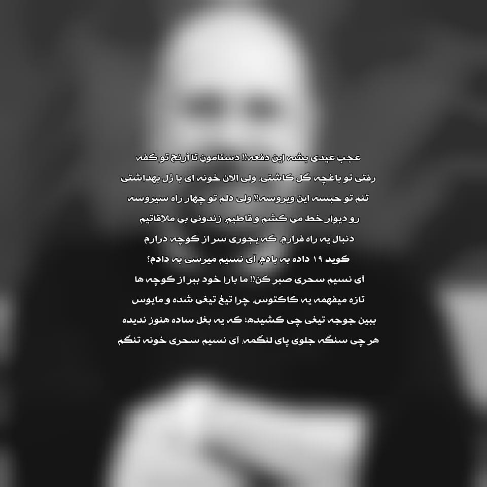 دانلود آهنگ عجب عیدی بشه این دفعه محمد بحرانی و حسن همایون فال
