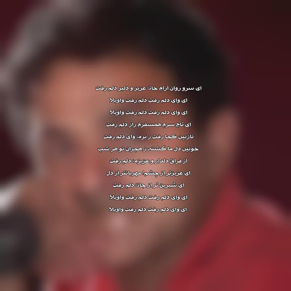 دانلود آهنگ ای وای دلم رفت واویلا مالک حدپور سراج