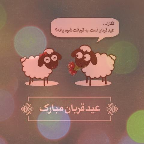 دانلود ۶ آهنگ عید قربان | آهنگ کردی، عربی و فارسی به مناسبت عید قربان