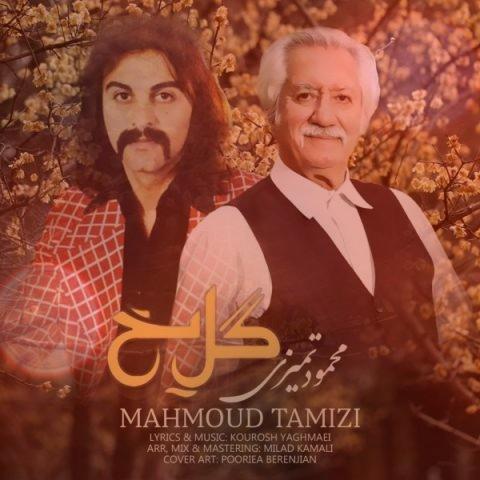 آهنگ گل یخ با گیتار ورژن جدید از محمود تمیزی