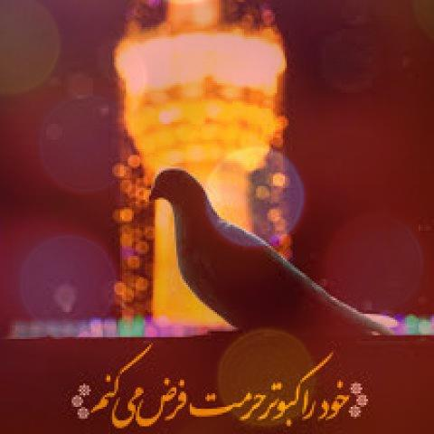 روضه سوزناک و غریبی امام رضا صوتی